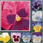 Pansy Portraits in Cross Stitch